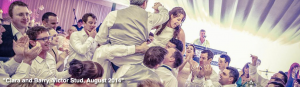 Blush Wedding Band Testimonials